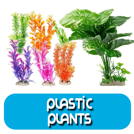 Plastic and Silk Plants